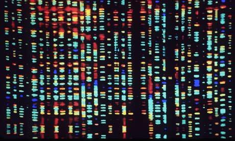 Genetic Basis of Disease Resistance and Heat Tolerance analysed in Gir