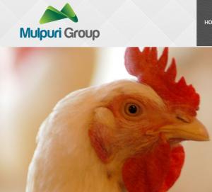 Mulpri Foods & Feeds Pvt Ltd (Nuzvid)   IndianCattle