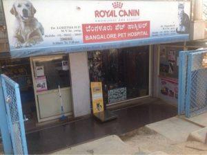 Bangalore Pet Hospital | IndianCattle