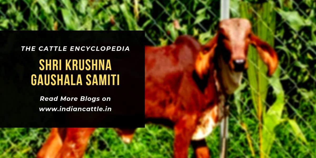 Shree Krushna Gaushala Samiti
