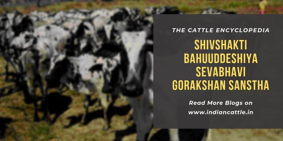 shivshakti bahuuddeshiya sevabhavi gorakshan sanstha