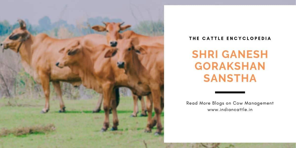 Shri Ganesh Gorakshan Sanstha