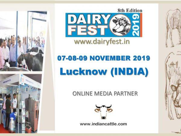 Dairy Fest 2019
