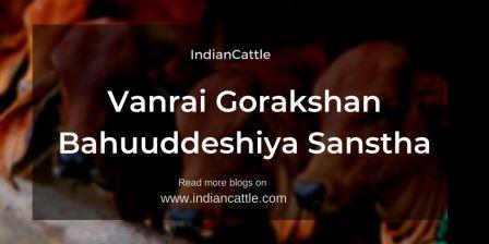 Vanrai Gorakshan Bahuuddeshiya Sanstha