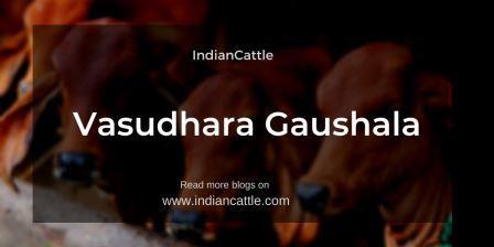 Vasudhara Gaushala
