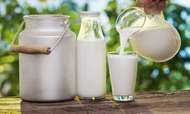 Image result for indian cow milk